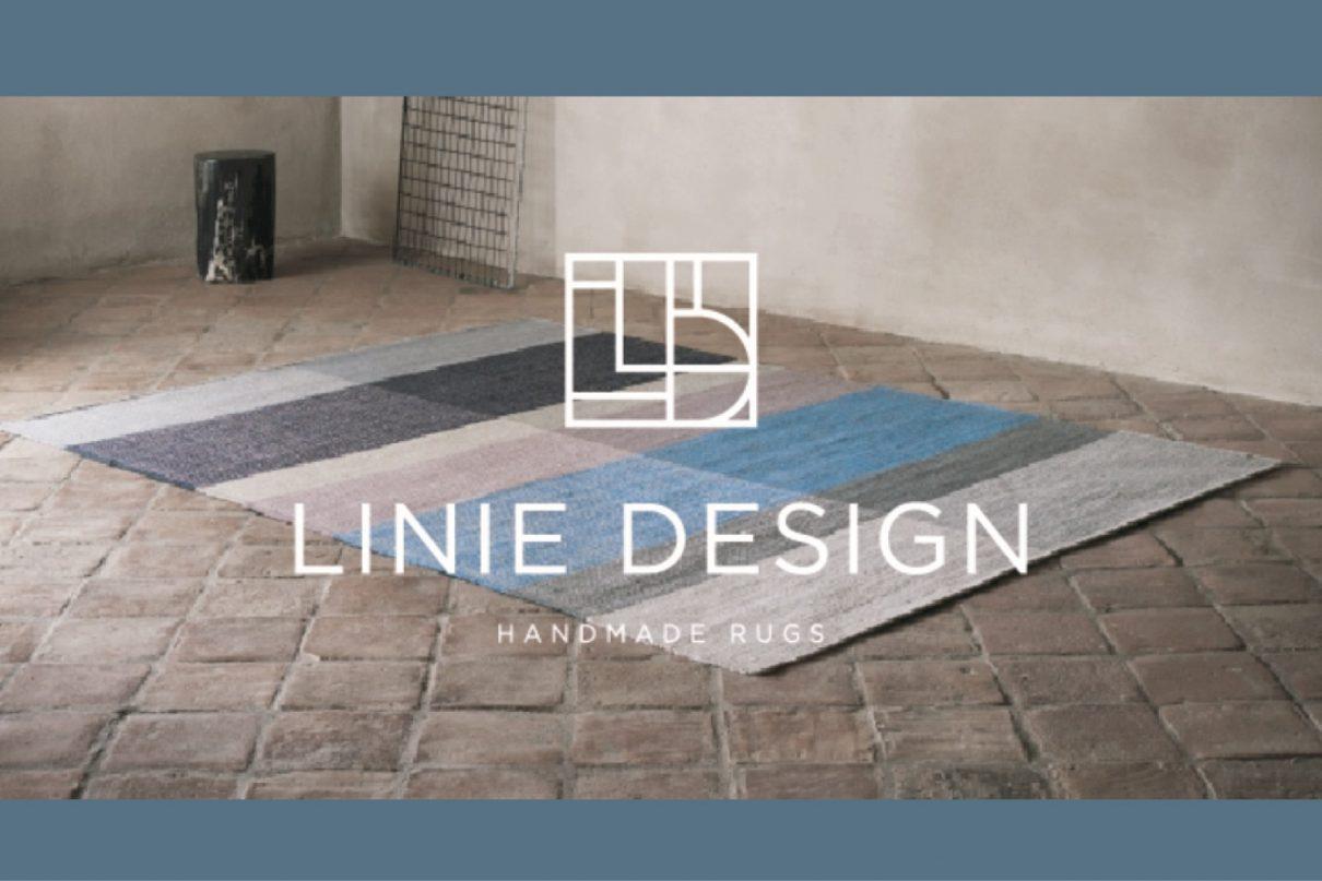 LINIE slide