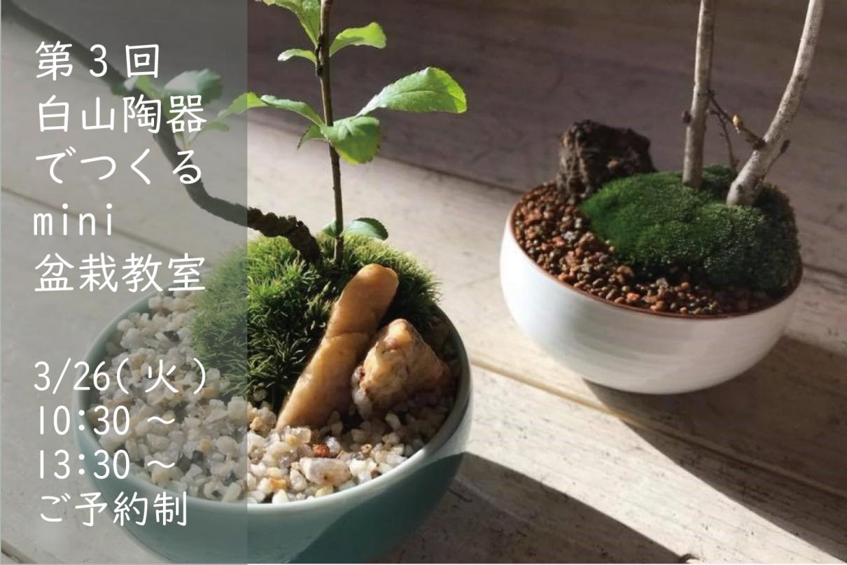 bonsai slide