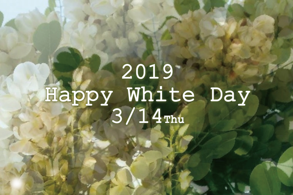 white day slide